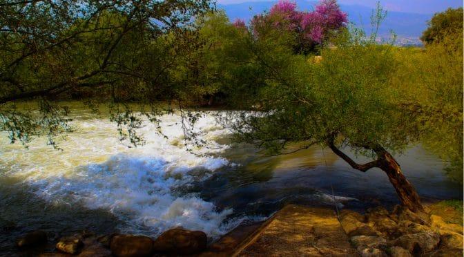 צימרים בטבע על גדות נהר הירדן בצפון הארץ ברמת הגולן.
